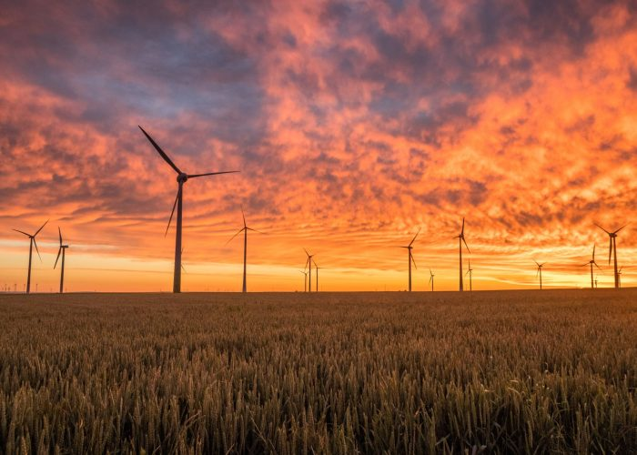 How to Switch to Renewable Energy