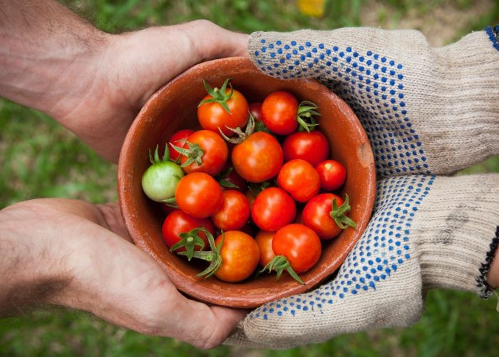 How to Eat Local and Sustainable