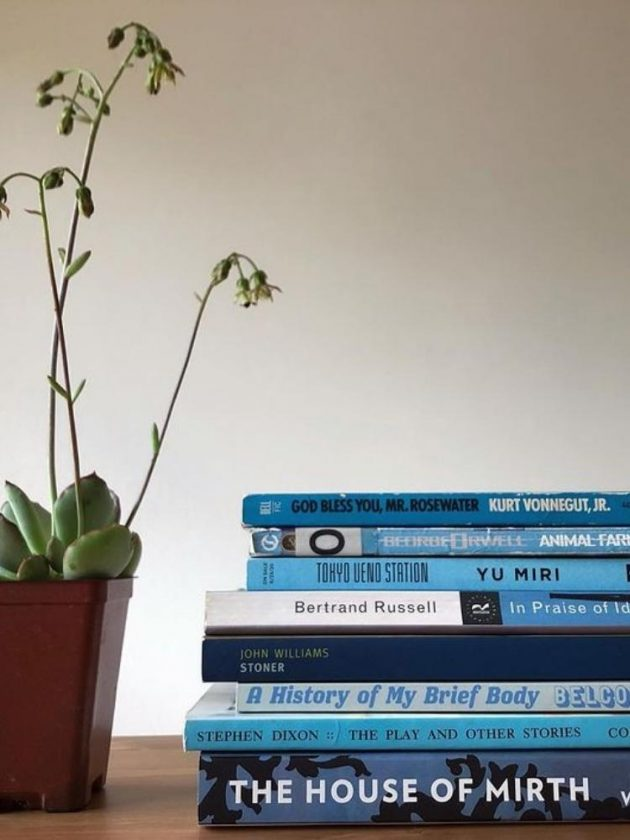 Sustainable book alternatives from Bookshop