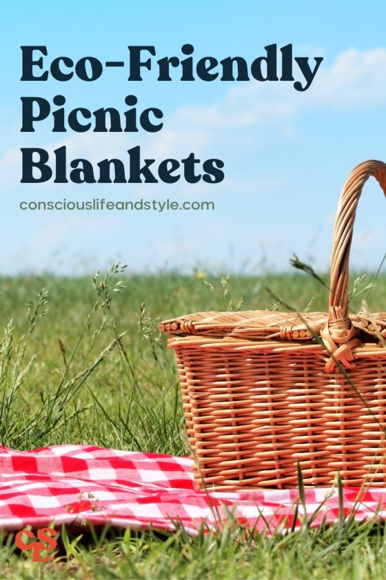 Eco-Friendly Picnic Blankets - Conscious Life and Style