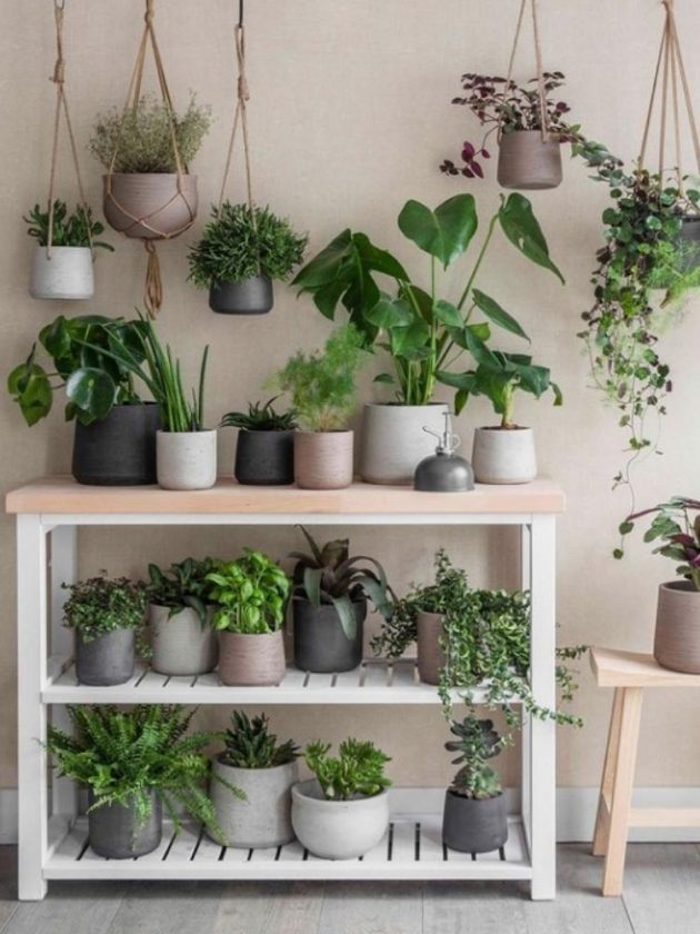 Eco-friendly gardening tools from Garden Trading