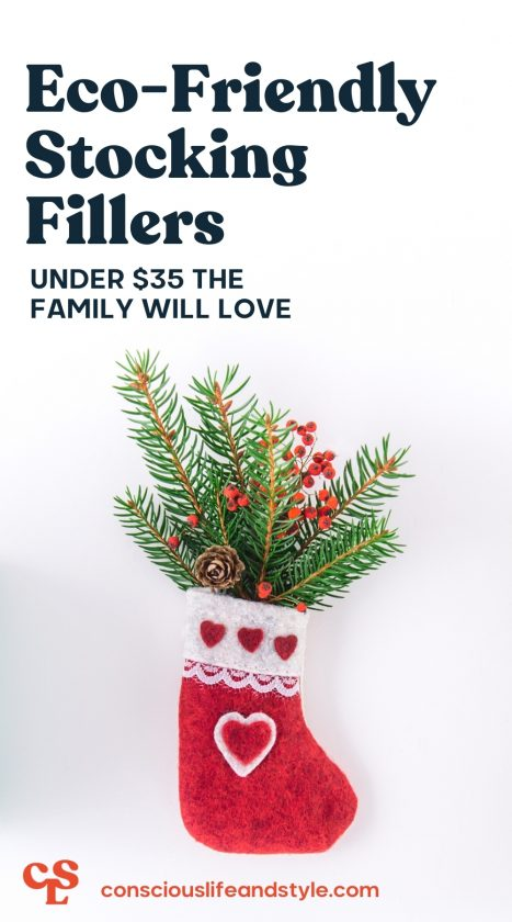 Eco-friendly Stocking Fillers Under $35 the Family Will Love - Conscious Life and Style